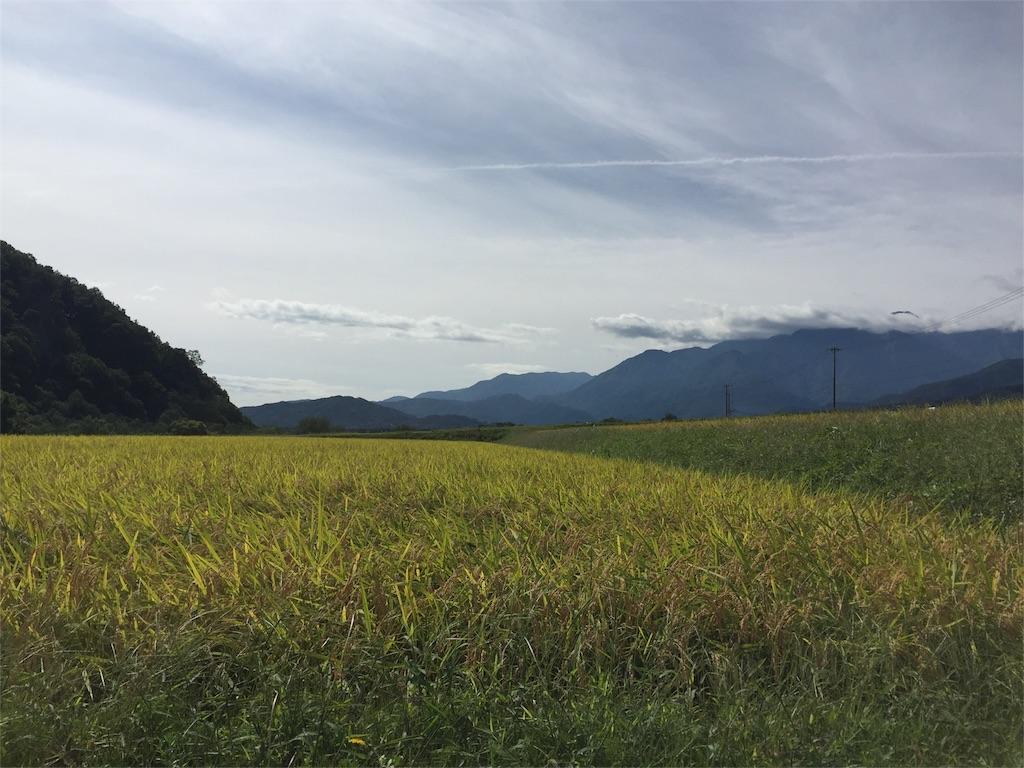 f:id:hachimisan:20171013122140j:image