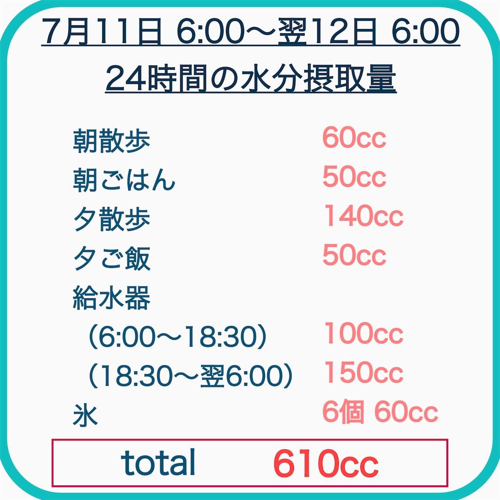 f:id:hachinohige:20210712193908j:image