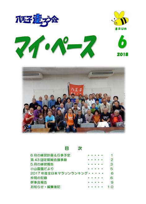 f:id:hachioji-hashiroukai:20180610160819j:plain
