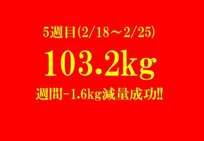 f:id:hachiroublog:20190224211222j:plain