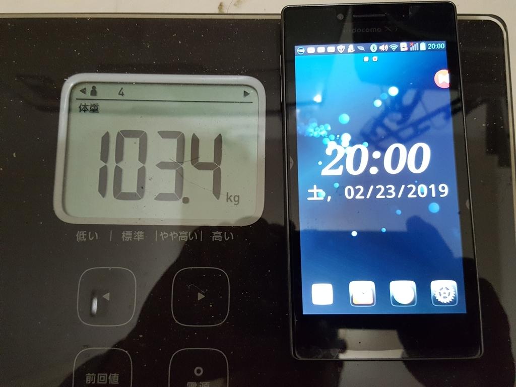 f:id:hachiroublog:20190224211845j:plain
