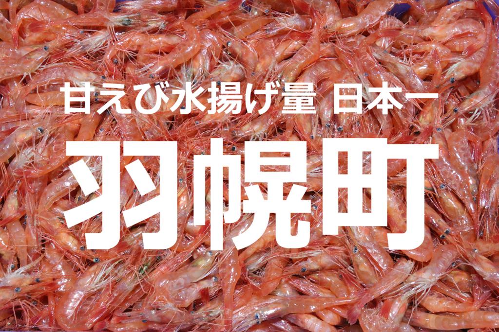 f:id:hadaka_denkyu:20180509192011j:plain