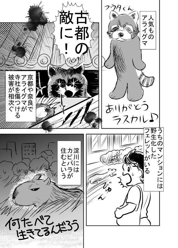 f:id:hagitani-naoko:20110813121555j:image
