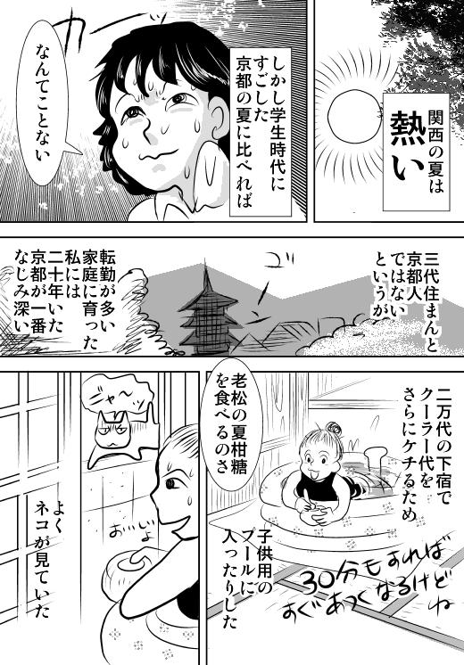 f:id:hagitani-naoko:20110813123114j:image