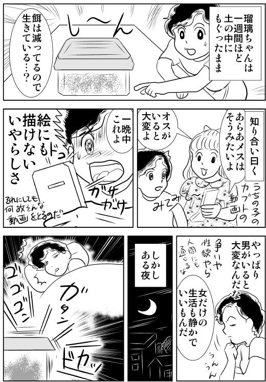 f:id:hagitani-naoko:20110813125753j:image