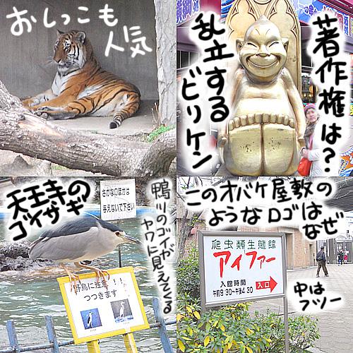 f:id:hagitani-naoko:20110813160948j:image