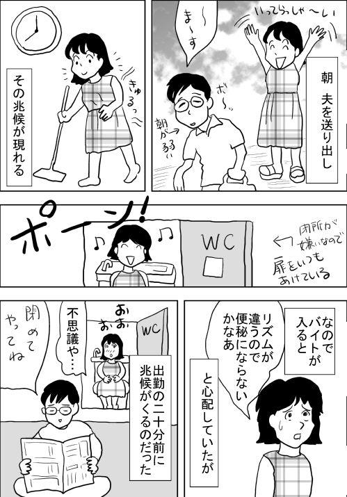 f:id:hagitani-naoko:20110813203849j:image