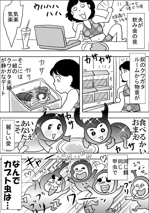 f:id:hagitani-naoko:20110813203903j:image