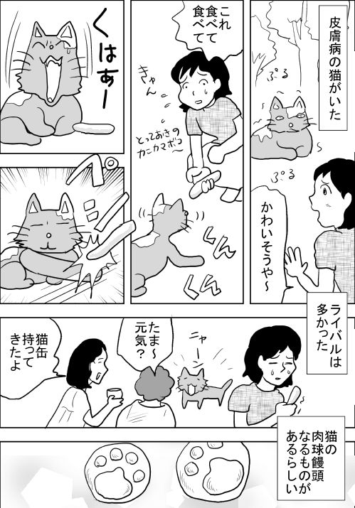 f:id:hagitani-naoko:20110813212202j:image