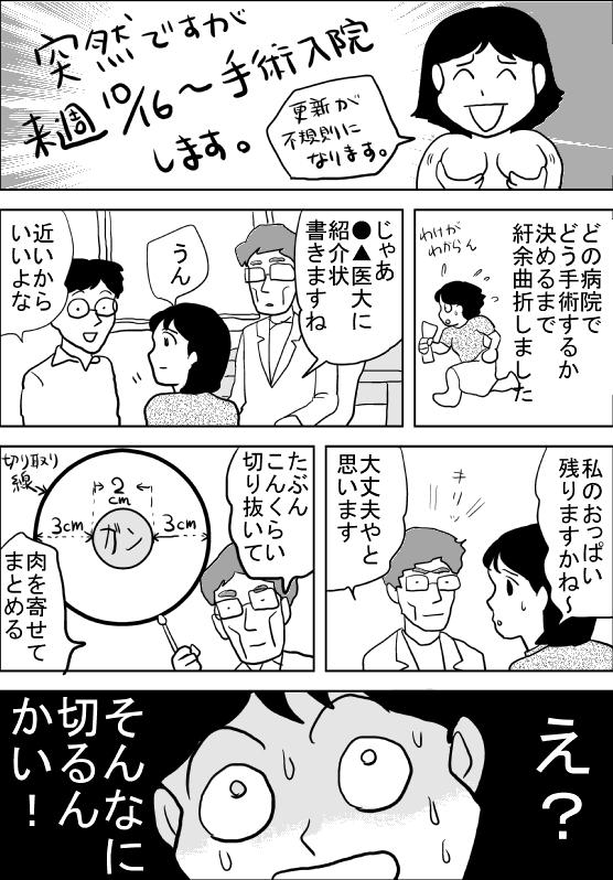 f:id:hagitani-naoko:20111012090622j:image