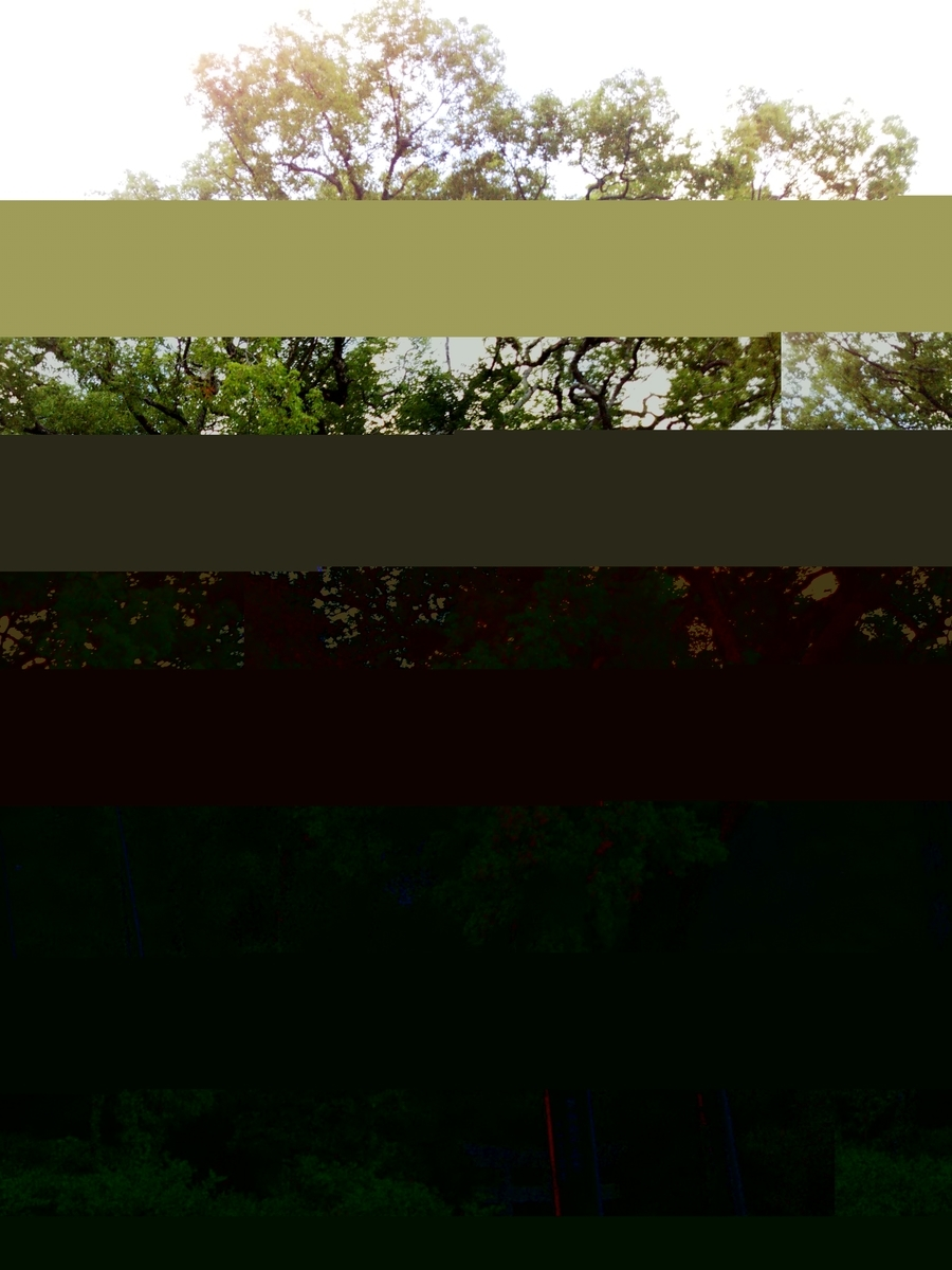 f:id:haguregarasu369:20211020004853j:plain