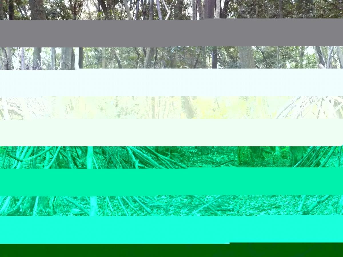 f:id:haguregarasu369:20211020004948j:plain