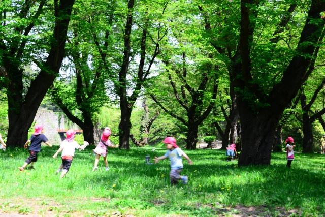 幼稚園 自然 遊ぶ 子ども