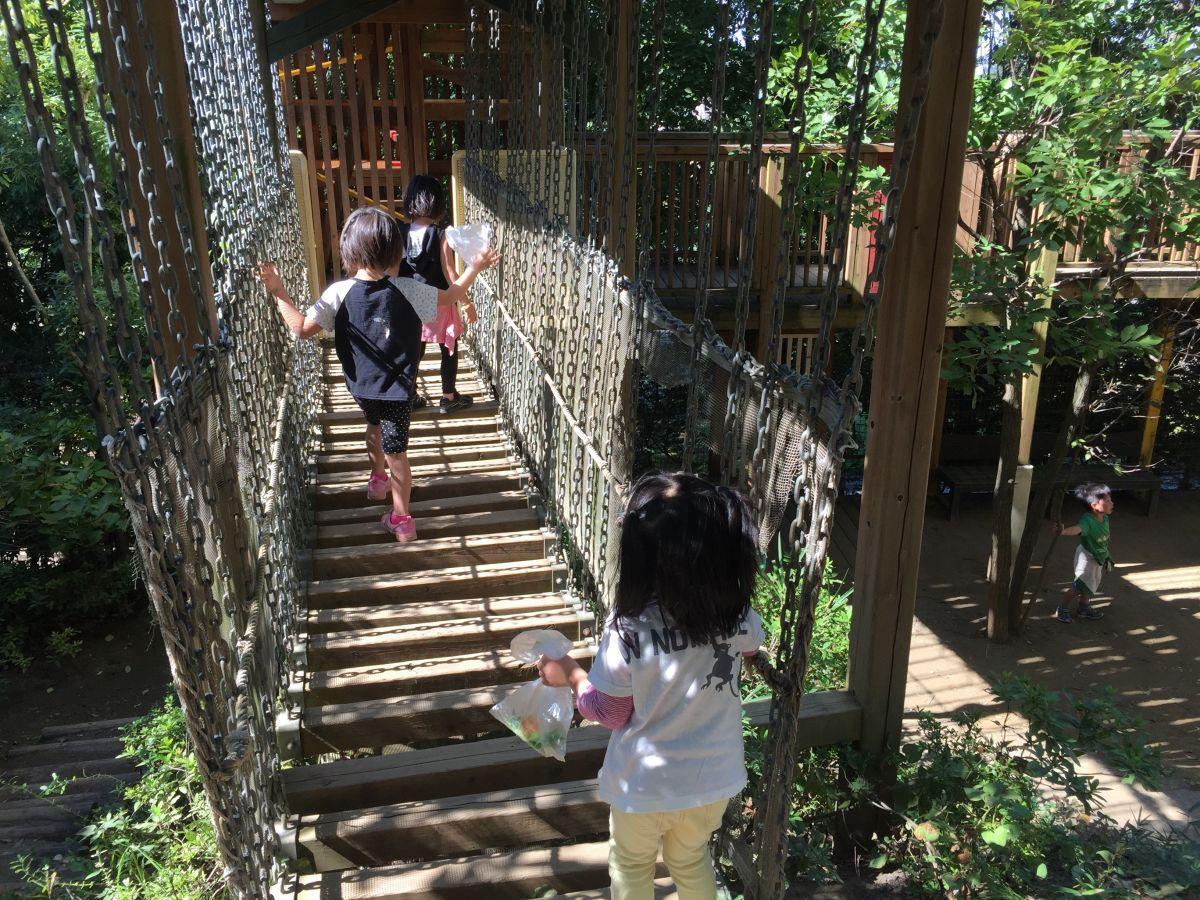 ゆうゆうの森幼保園 園庭