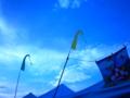 [Festival]