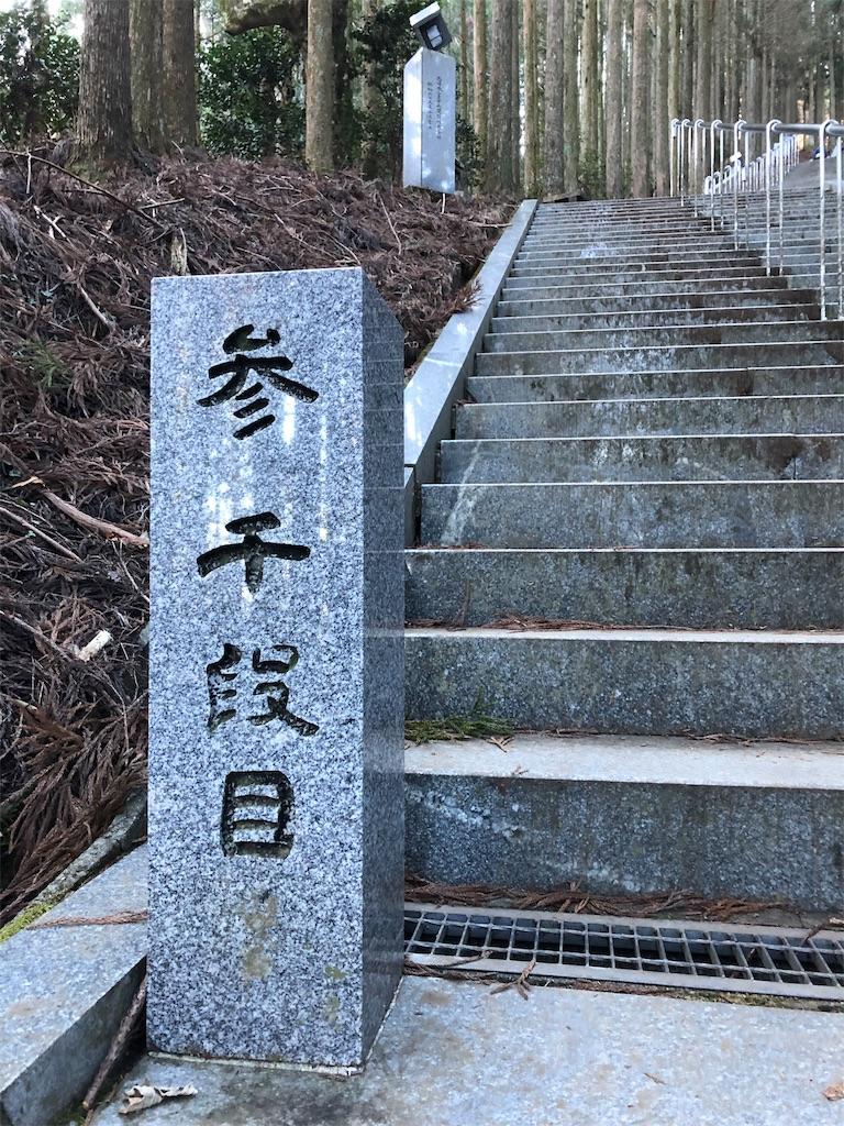 f:id:haiji_ttt:20190119210252j:image