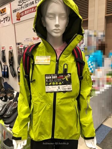 f:id:haijimama:20181110151815j:plain