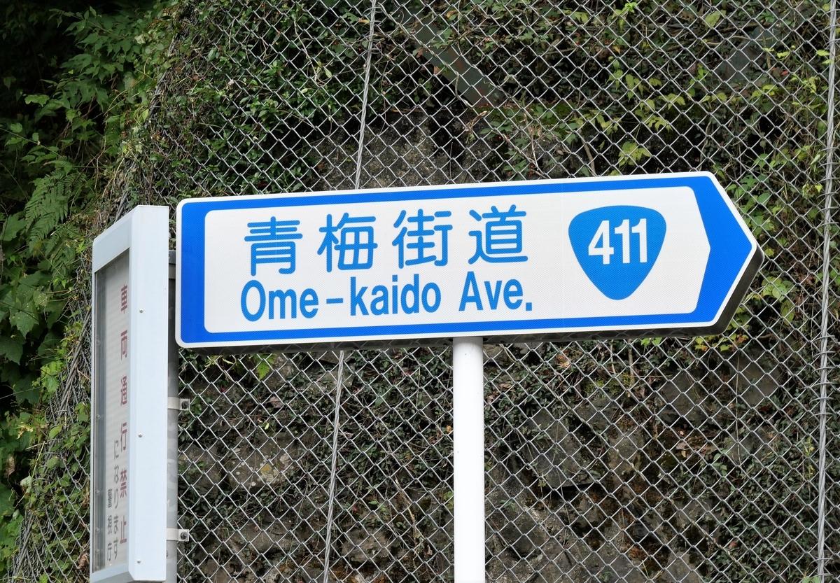 f:id:haikaiikite:20201110201116j:plain