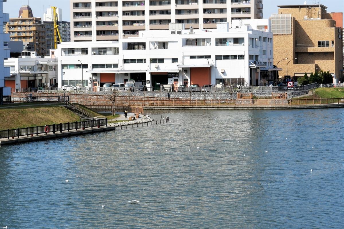 f:id:haikaiikite:20210321162659j:plain