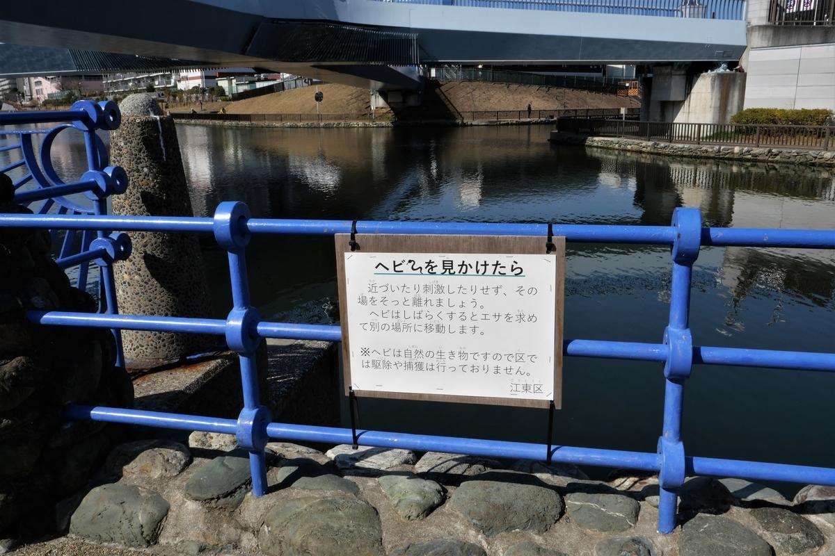f:id:haikaiikite:20210326131420j:plain
