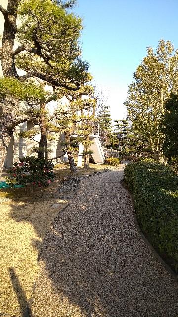 f:id:haikusumomochan:20210222063052j:image