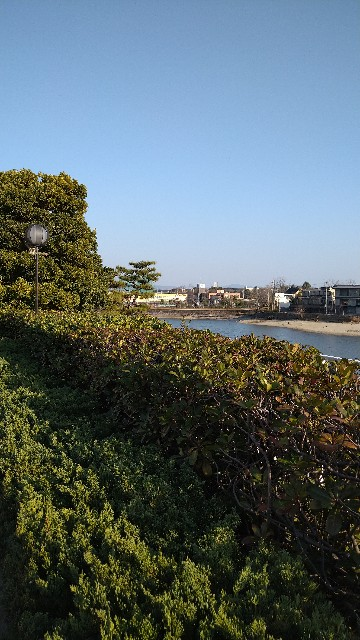 f:id:haikusumomochan:20210222064345j:image