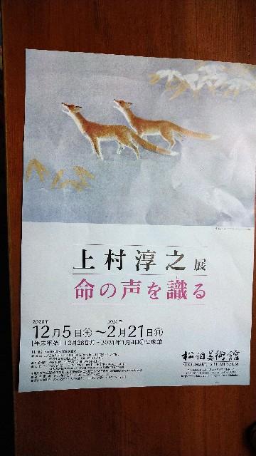 f:id:haikusumomochan:20210222065605j:image