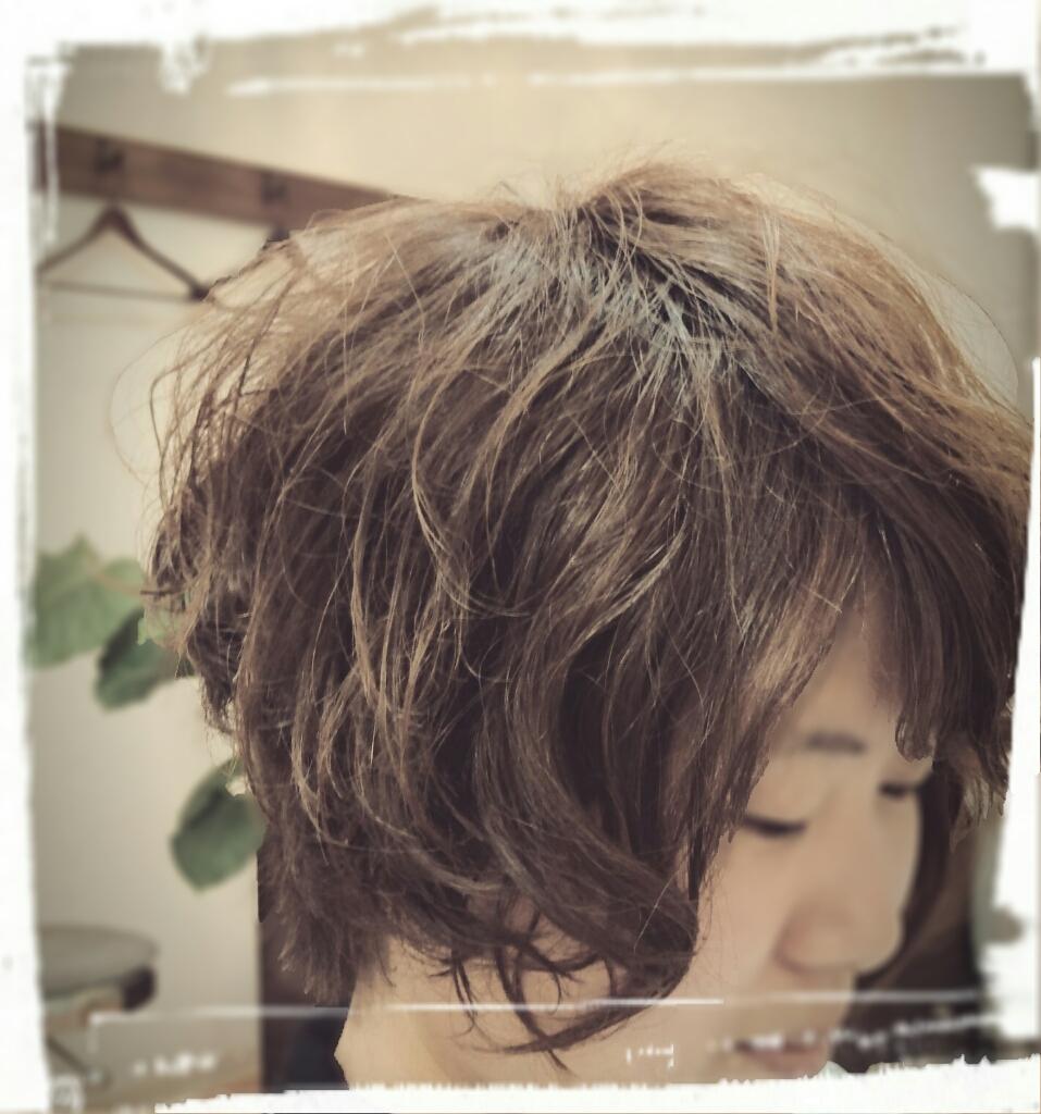 f:id:hair-sunny:20170330215716j:plain:w300