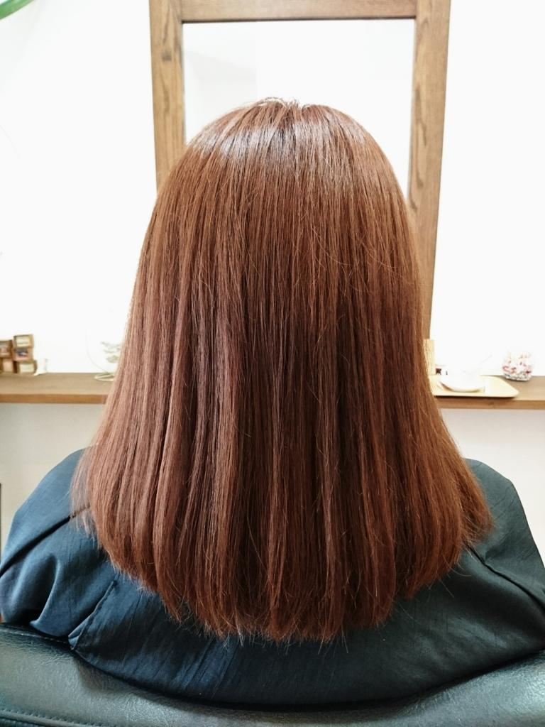 f:id:hair-sunny:20170331221649j:plain:w300