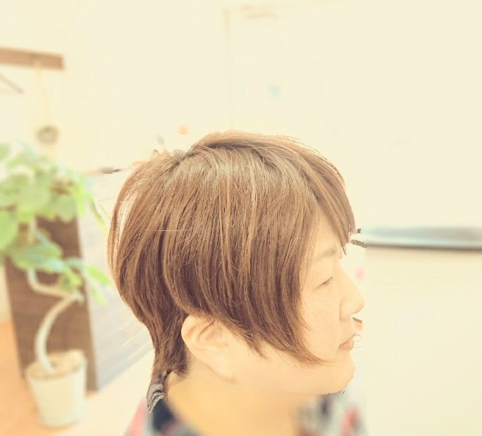 f:id:hair-sunny:20170406204628j:plain:w300