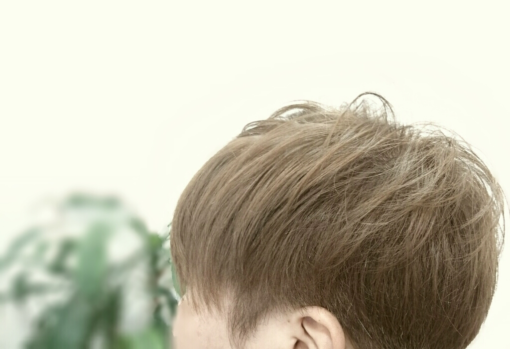 f:id:hair-sunny:20170413214644j:plain:w300