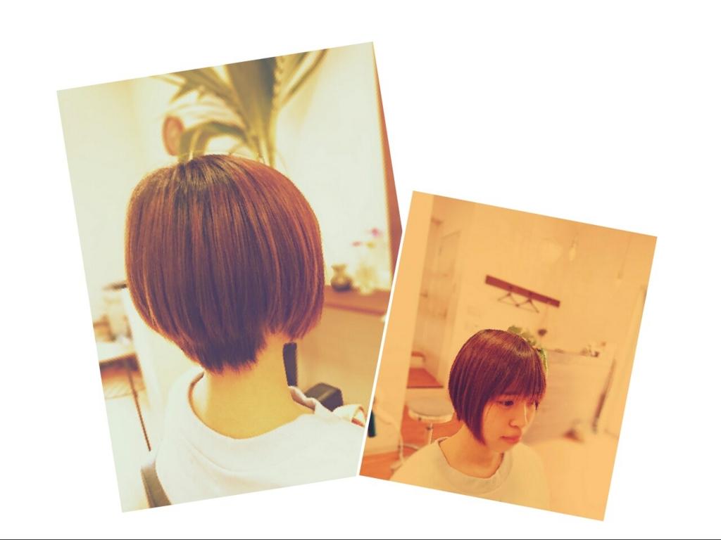 f:id:hair-sunny:20170415121152j:plain:w300