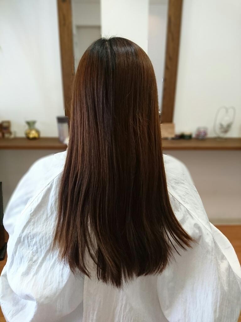 f:id:hair-sunny:20170421200849j:plain:w300