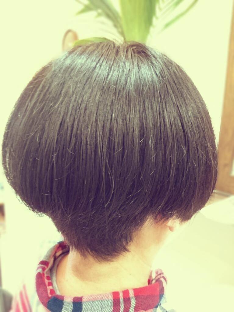 f:id:hair-sunny:20170428151918j:plain:w300