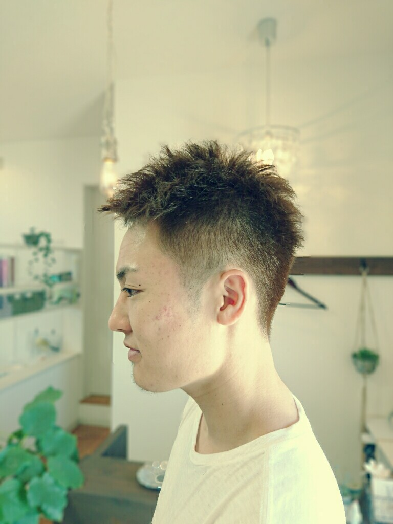 f:id:hair-sunny:20170430201712j:plain:w300