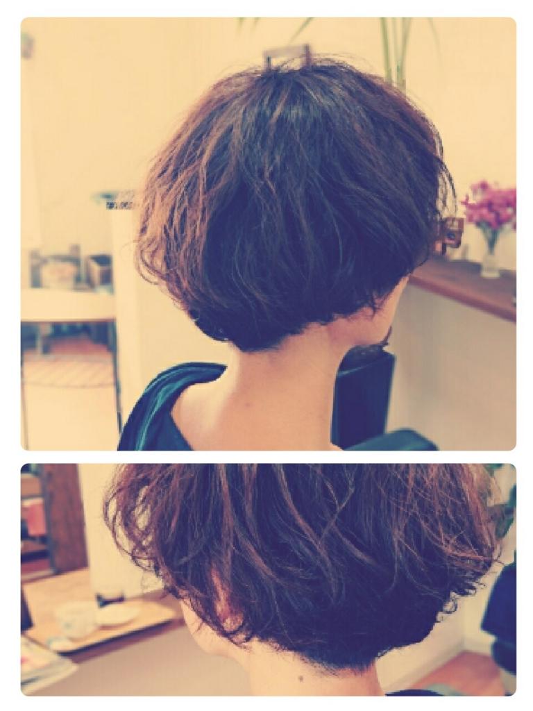 f:id:hair-sunny:20170525161152j:plain:w300