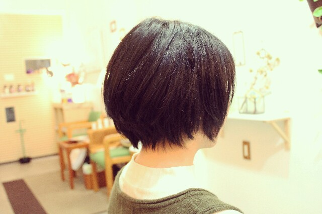 f:id:hairdesignLite:20170424080601j:image