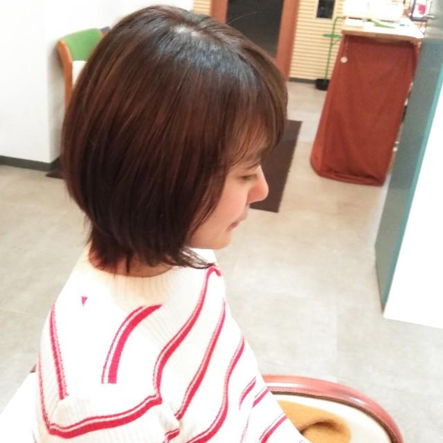 f:id:hairdesignLite:20190130225502j:image