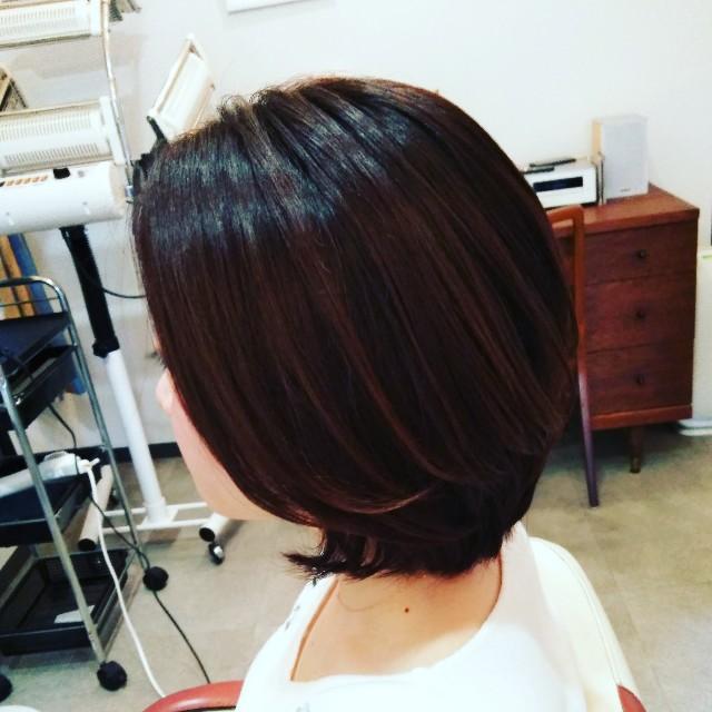 f:id:hairdesignLite:20190323223717j:image