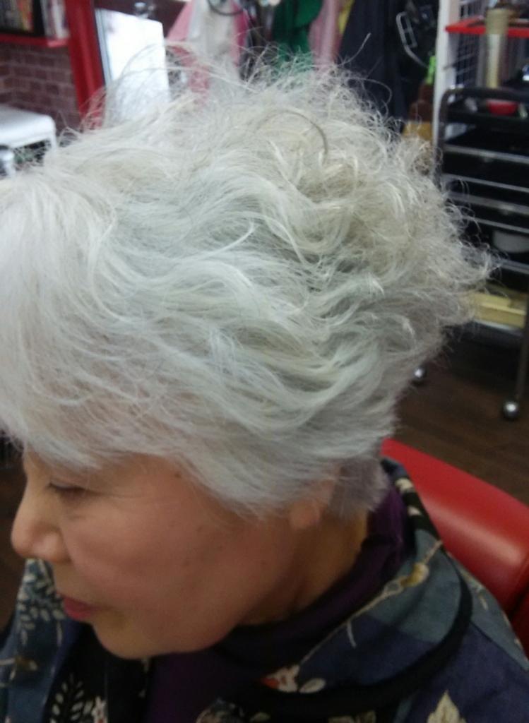 f:id:hairplazasugar:20170513193308j:plain