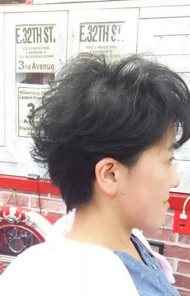 f:id:hairplazasugar:20170525200523j:plain
