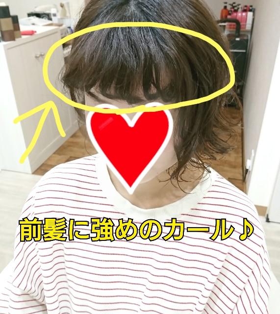f:id:hairsalon-wa:20190130192226j:image