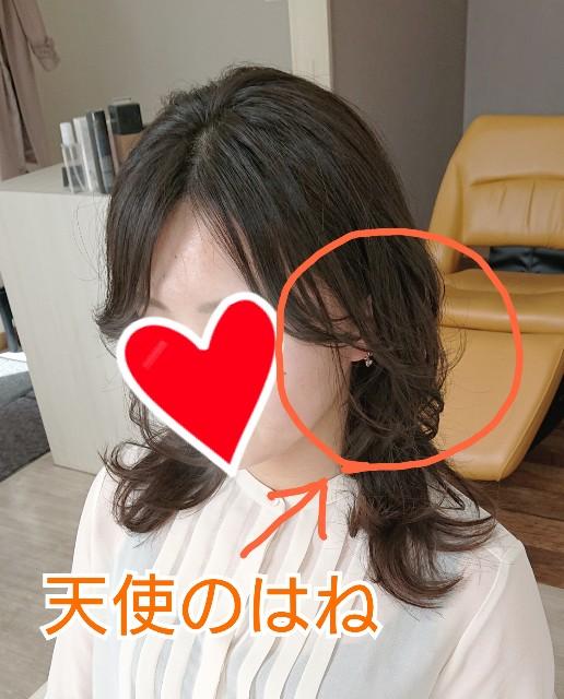 f:id:hairsalon-wa:20190417183403j:image