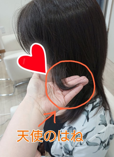 f:id:hairsalon-wa:20190425181116j:image