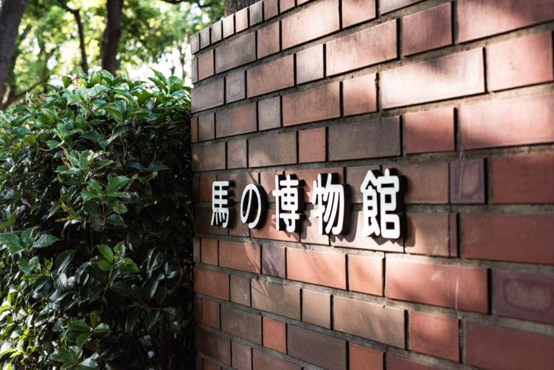 f:id:haiya_san:20170710010020j:image
