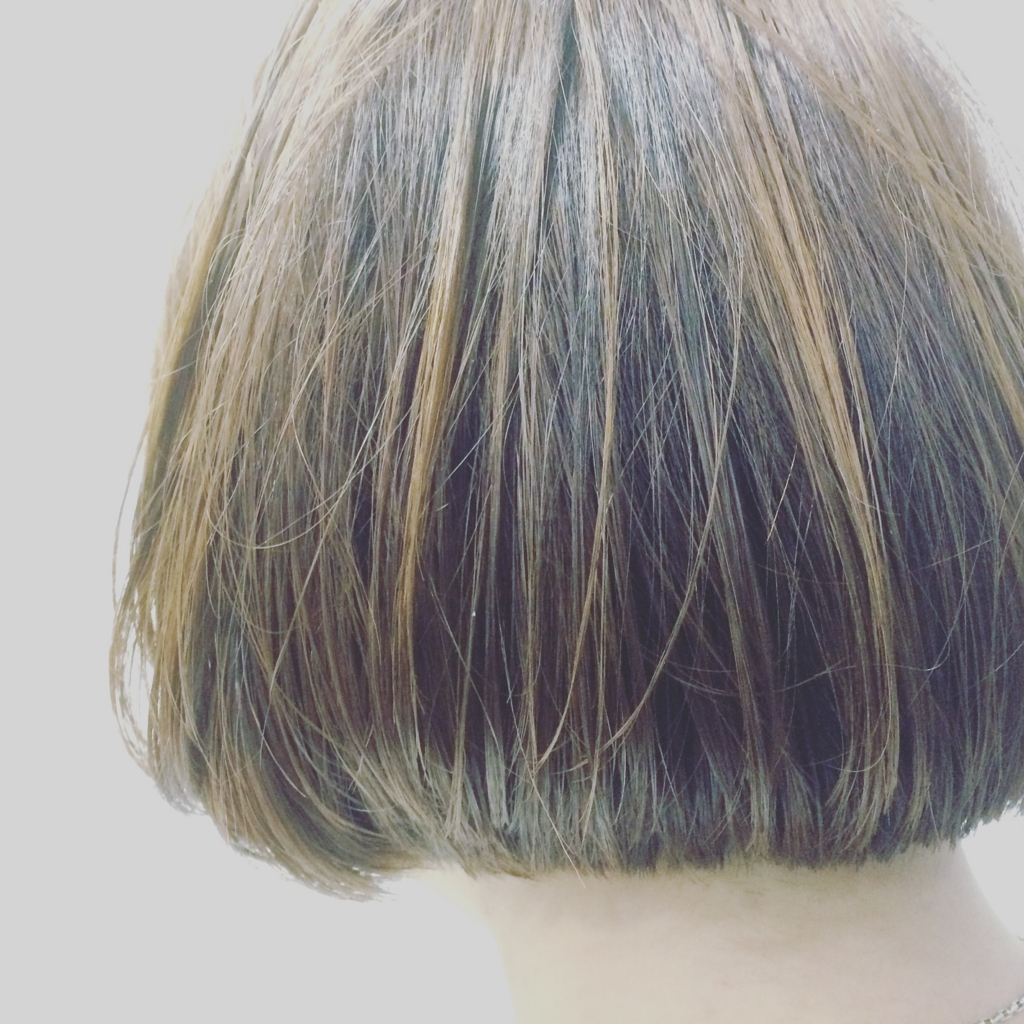 f:id:haiyamakashi:20161130040228j:plain