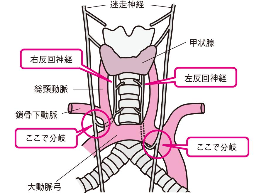 f:id:hakaiou20067:20201029084334p:plain