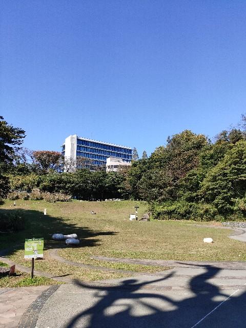 f:id:hakaiou20067:20201029172000j:image