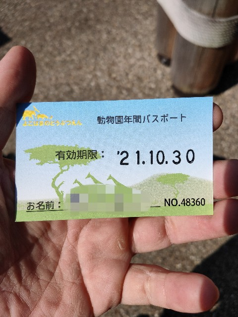 f:id:hakaiou20067:20201031202916j:image