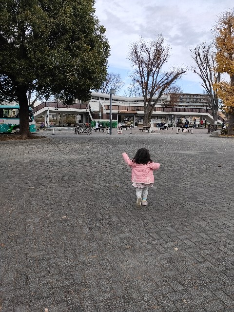 f:id:hakaiou20067:20201219191312j:image